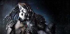 predators2010ban.jpg